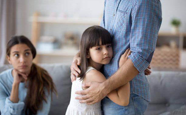 Ley Sobre Custodia De Hijos